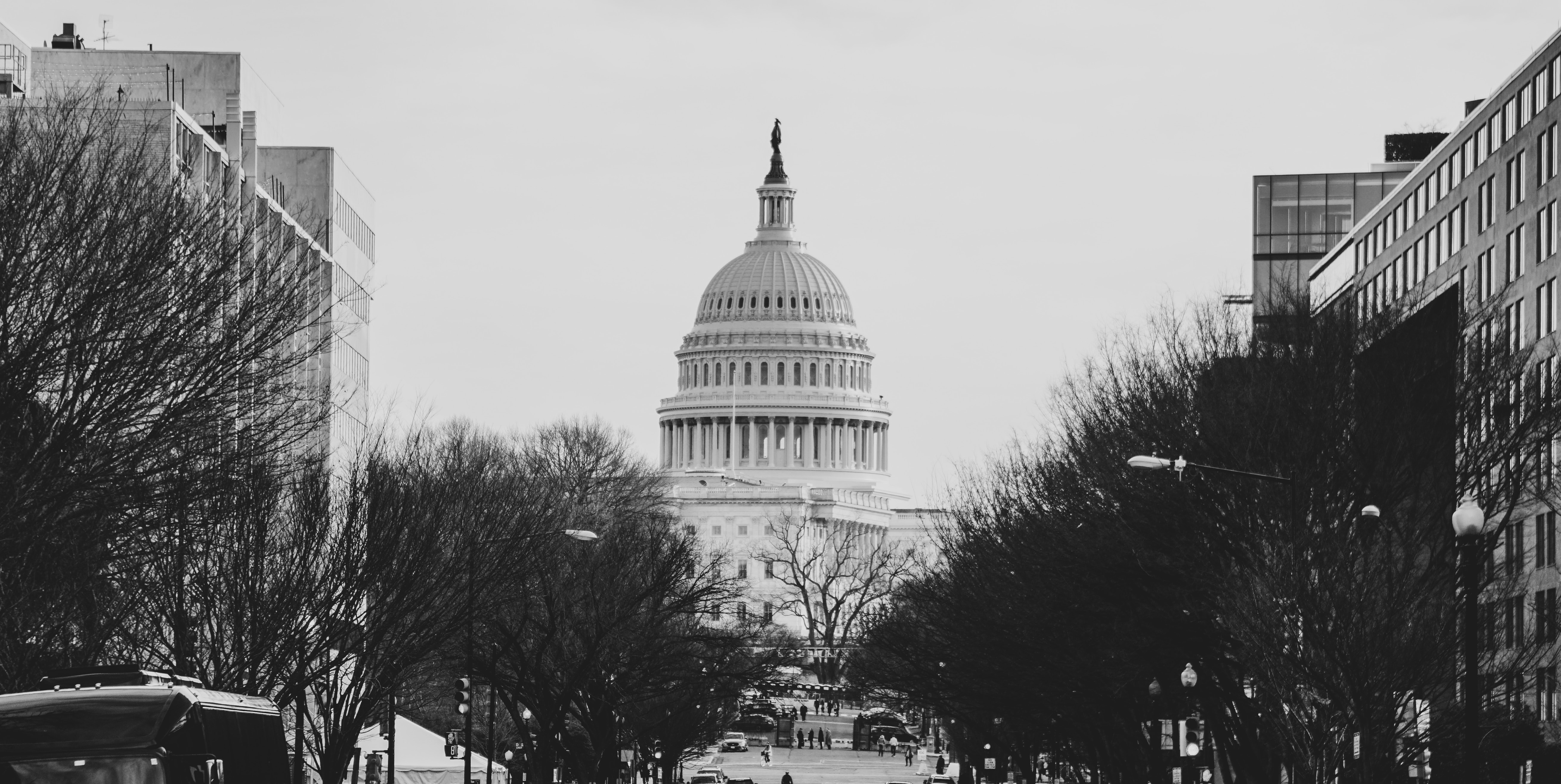 Making Your Voice Heard on The Hill